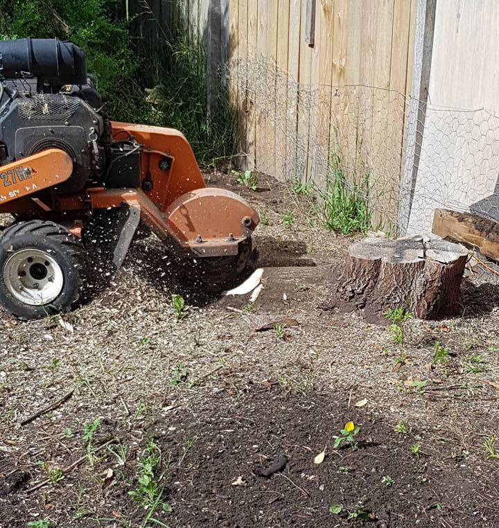 Stump Grinding Mornington Peninsula